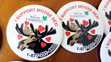 Moose%20Sex%20buttons