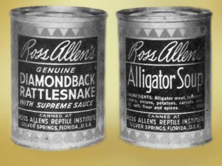 cannedreptiles
