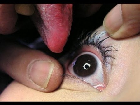 eyeball-licking